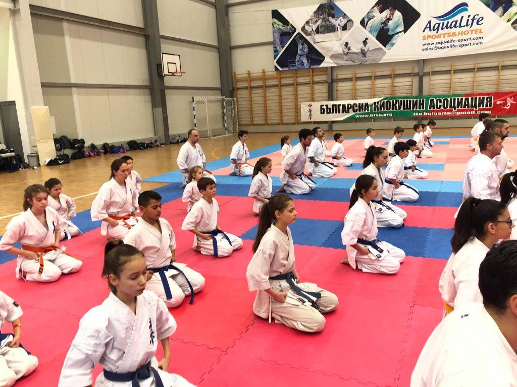Sorevnovaniya po Karate Kiokushin